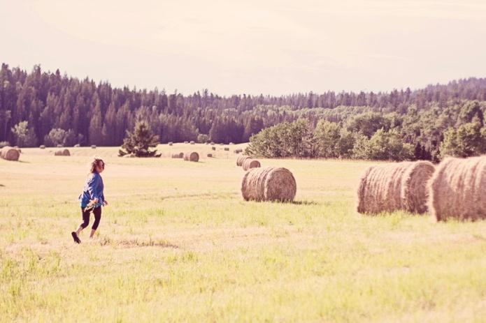 sharon and hay